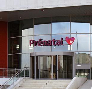 Prenatal hearts - Amersfoort